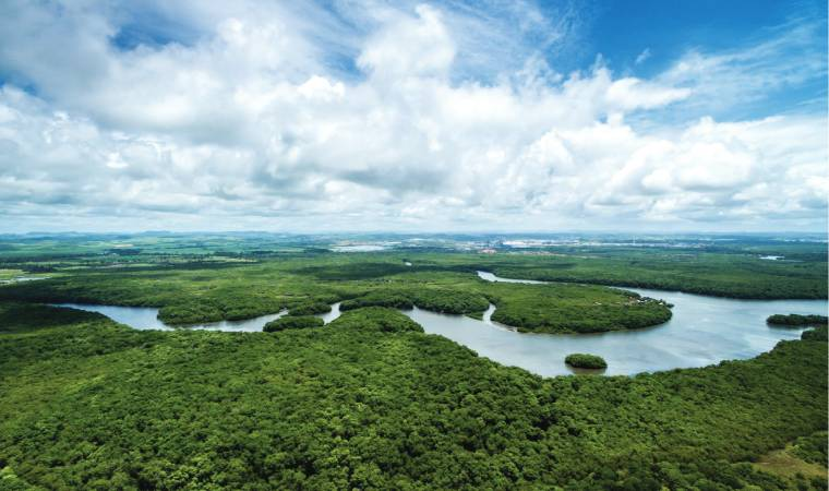 Brazilian Amazon through sustainable tourism. It could turn out to be the adventure of your lifetime as you glide through the flooded forests of the Mamiraua Reserve where jaguar sightings are not uncommon.